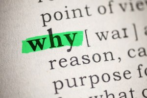 Why Purpose Reason Definition