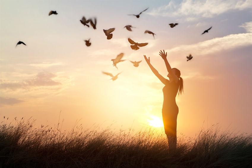 Let Go Woman Field Sun Birds Fly