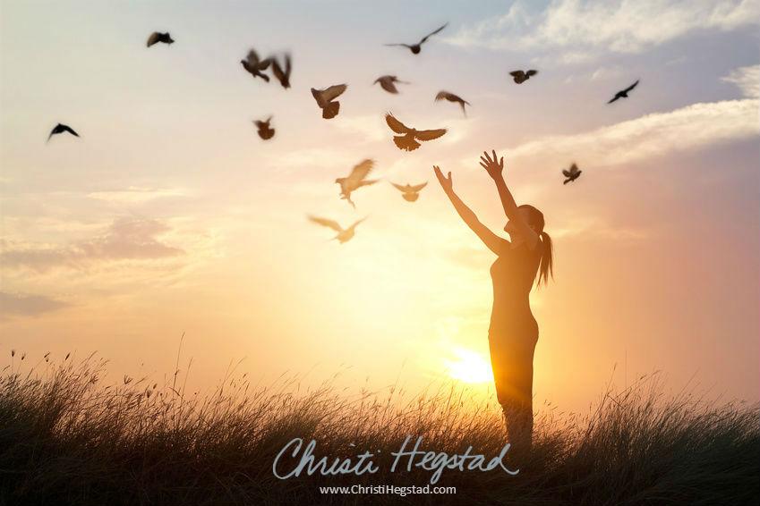 Let Go Woman Field Sun Birds Fly w website