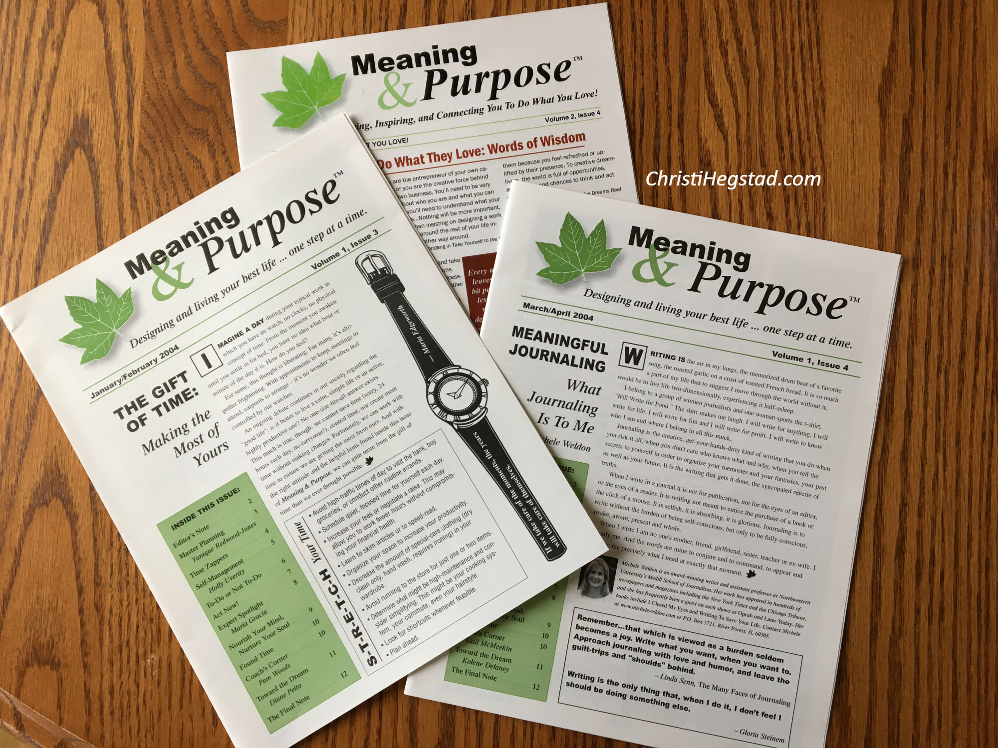 Meaning and Purpose Newsletter