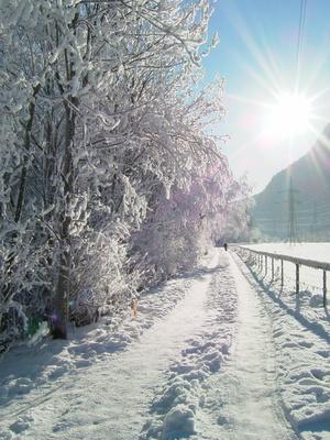 gehweg im winter 3
