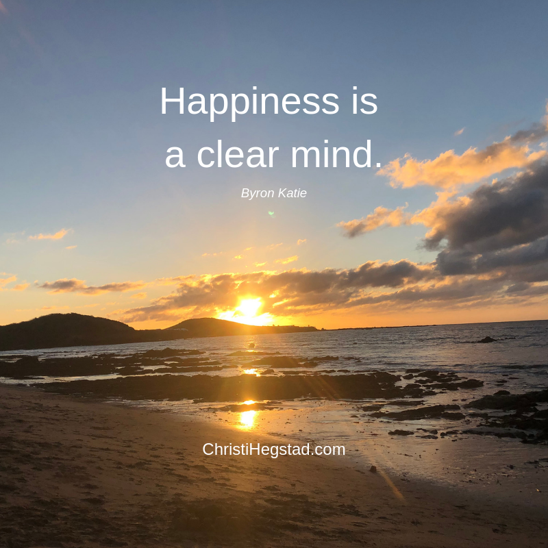 Happiness is a clear mind.