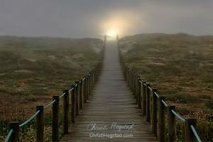 Bridge Path Field Sunrise w website