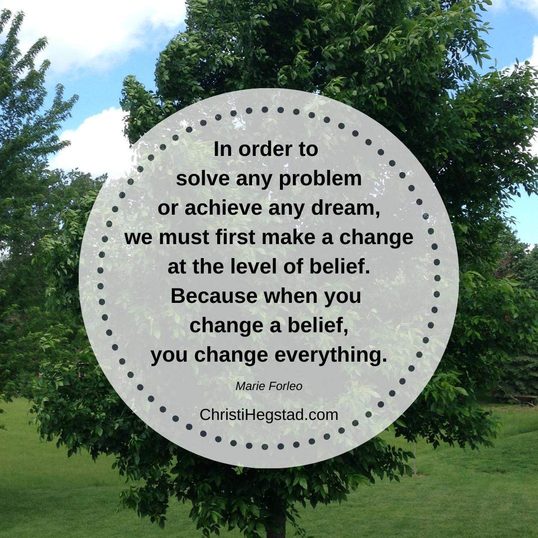 solve problem change belief-3