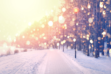 Color snowflakes on winter park background. Snowfall in park.